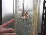 豆電球で加熱実験